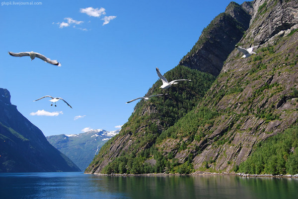 Click to enlarge image Norway_16.jpg